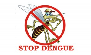 Image credit:  http://www.epakistannews.com/25366/dengue-virus-killed-four-in-lahore.html